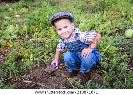Smiling little boy digging in vegetables garden - stock photo