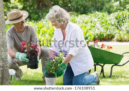 Smiling mature couple engaged in gardening - stock photo