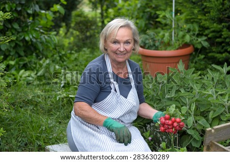Smiling Middle Aged Blond Woman at the Garden Holding Radishes From her Green Plants While Looking at the Camera. - stock photo