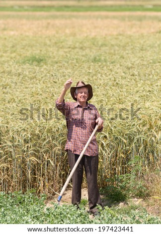 Smiling old man farmer in barley field holding fork and waving his hand - stock photo