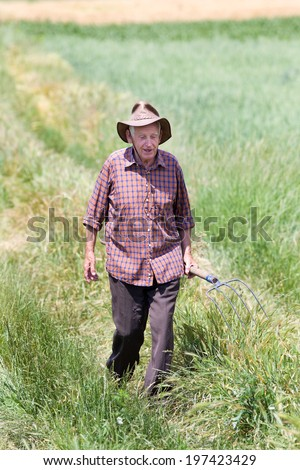 Smiling old man farmer walking and holding fork in wheat field - stock photo