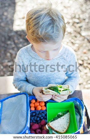 smiling schoolboy enjoying recess and healthy lunch - stock photo