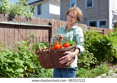 Smiling senior woman holding basket filled with vegetables - stock photo