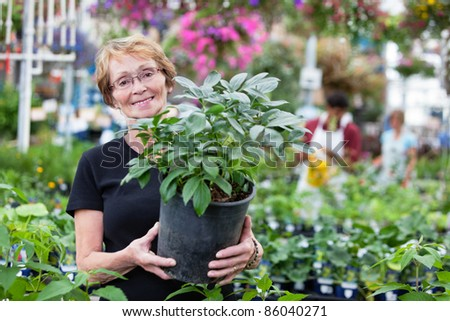 Smiling senior woman holding potted plant with people in background