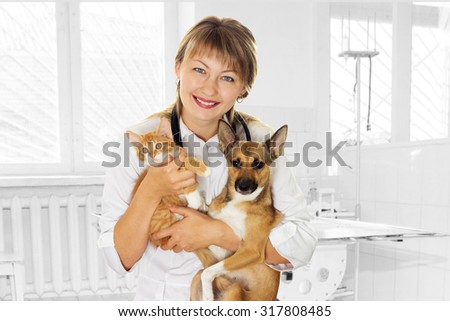 smiling vet and puppy and kitten in clinic - stock photo