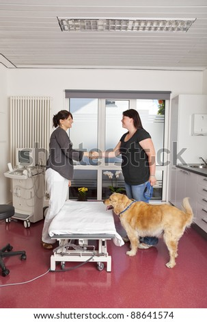 smiling veterinarian shaking hands with a female dog owner