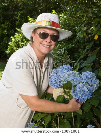 Smiling woman in sunglasses and straw hat picking big blue hydrangeas in her garden - stock photo