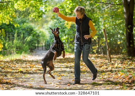 Smiling woman is playing with a dobermann in the forest. - stock photo