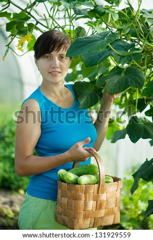 Smiling woman picking cucumber in the hothouse - stock photo