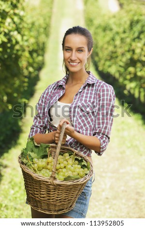Smiling woman with basket of grapes in the vineyard - stock photo