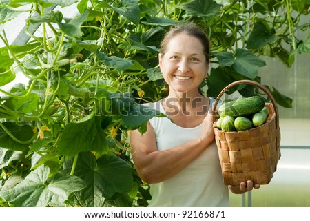 Smiling woman with harvested cucumbers in the hothouse - stock photo