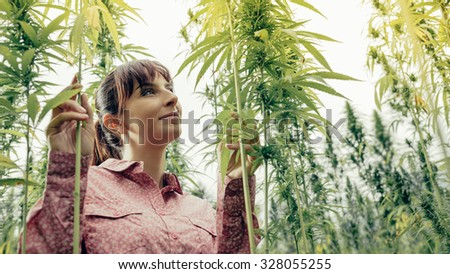 Smiling young woman in a hemp garden touching plants - stock photo