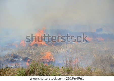 Smoke and flames occur from agriculturist Stubble burning rice straw for farming new rice - stock photo