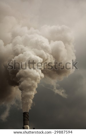 Smoke from talk Ecology problems