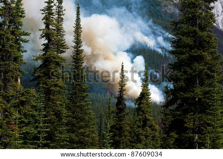 Smoke from wildfire in Canadian Rockies - stock photo