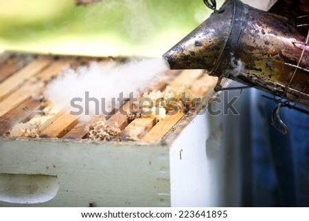 Smoker beekeepers tool to keep bees away from hive - stock photo