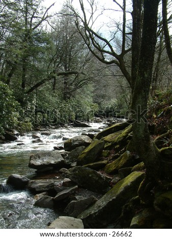 Smokey Mountain Stream - stock photo