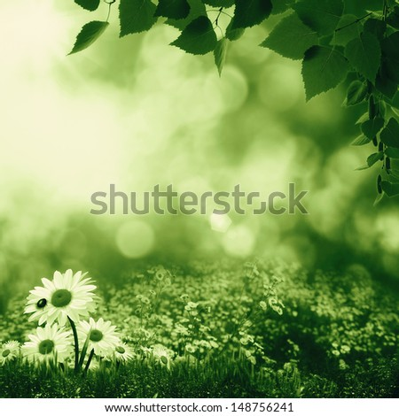 Smokey summer day on the meadow, abstract natural landscape - stock photo