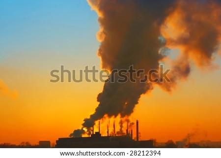 Smoking plant - stock photo