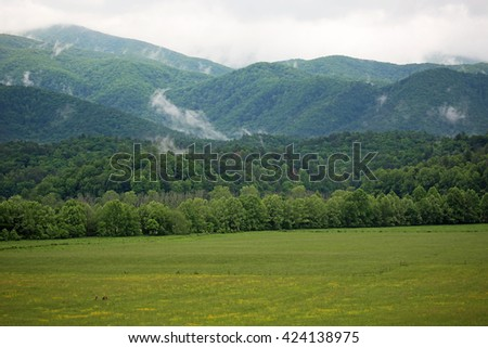 Smoky Mountains  - Great Smoky Mountains National Park, Tennessee - stock photo