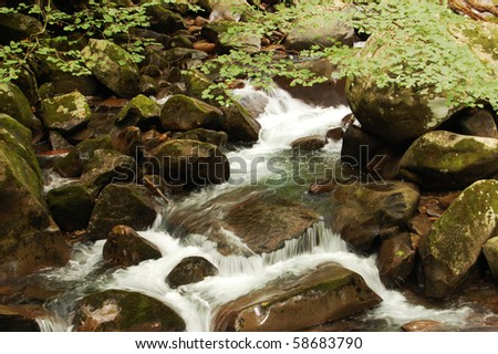 Smoky Mountains river on rocks, Big Creek trail - stock photo