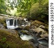 Smoky Mountains Waterfall - stock photo