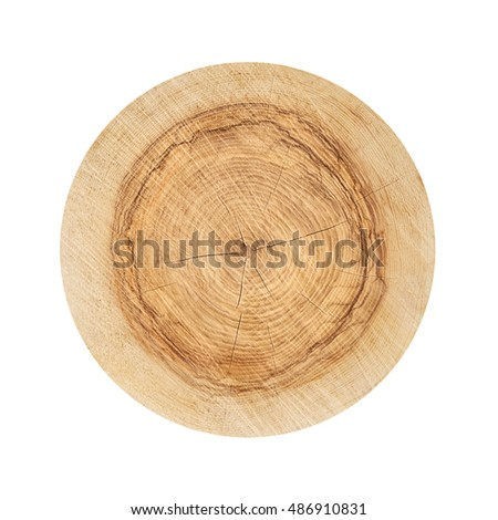 Smooth flat wooden surface from a tree with wavy rings and fresh cut pulp. Isolated on a white background.