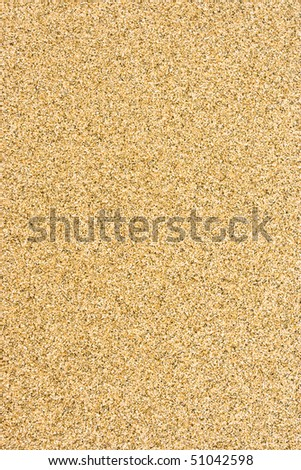 Smooth sandy floor and fine texture.