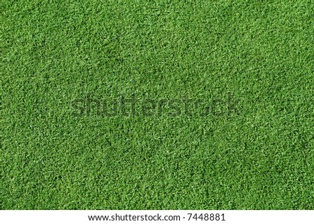 Smooth, short trimmed grass.