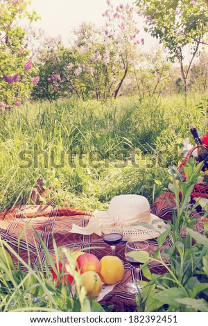 Snack picnic, fruit, dessert and wine - stock photo