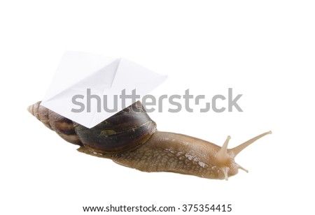 Snail carrying an envelope isolated on white (snail mail concept) - stock photo