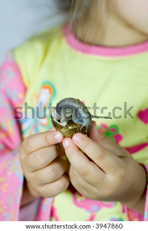snail in the little hands