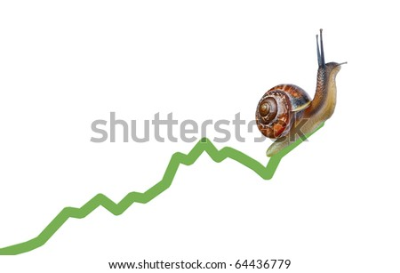 Snail on chart currency isolated on white background - stock photo