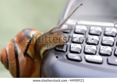 Snail on the phone - stock photo