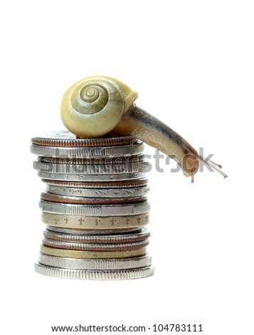 snail on top of coins - stock photo
