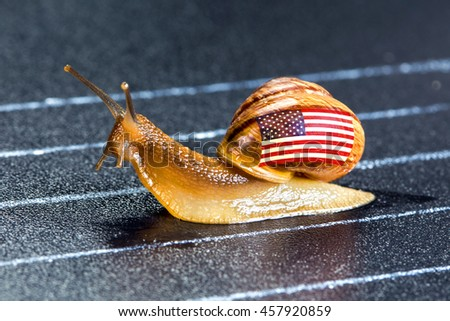 Snail under flag of United States on sports track moves to finish line - stock photo