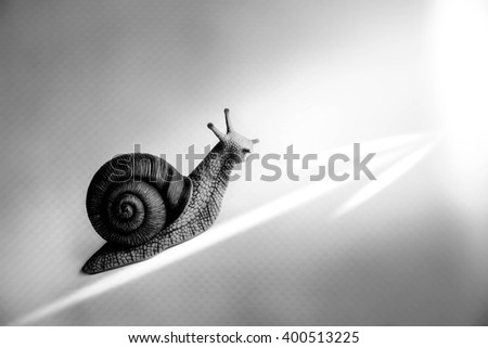 Snail with arrow,Business growth concept - stock photo