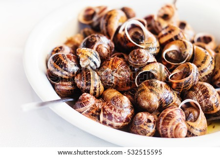 Snails cooked in white wine, traditional Cretan recipe (selective focus)