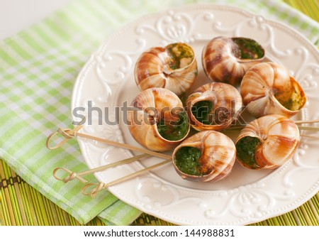 Snails escargot with butter and parsley - stock photo