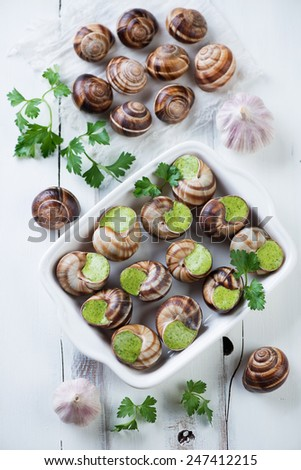Snails with garlic butter and herbs, white wooden background - stock ...