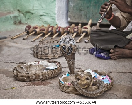 Snake charmer in India - stock photo