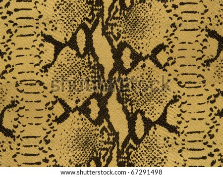 snake leather background texture