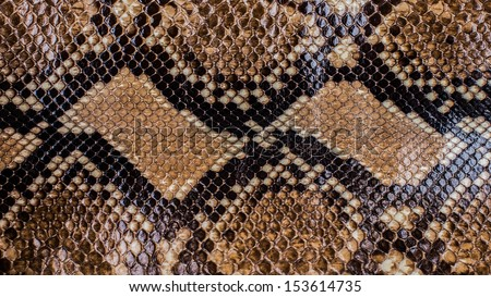 Snake Reticulated python skin pattern background - stock photo