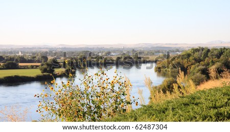 Snake River in Idaho, with yellow flowers in foreground, and rural farmland in background