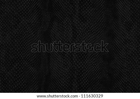 snake skin black - stock photo