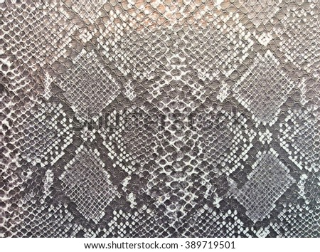 Snake skin black and white