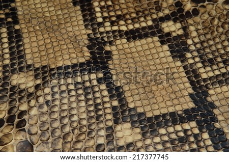 Snake skin leather texture - stock photo