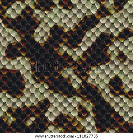 snake skin pattern background - stock photo