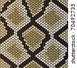 Snake skin pattern for design as a background. Vector version also available in gallery - stock vector