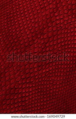 snake skin red - stock photo